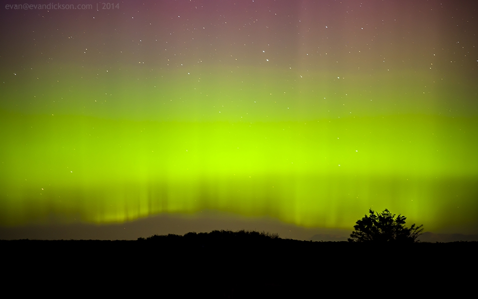Aurora over the PEI National Park - September 12, 2014.