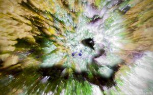 Evan Dickson - Tree at Night-0801